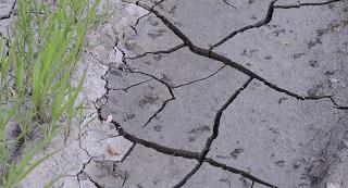 drought soil, foundation repair